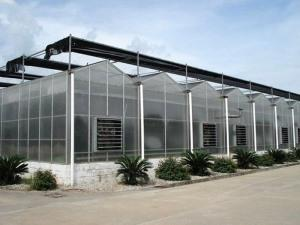Company Greenhouse